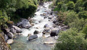 Ströme lebendigen Wassers